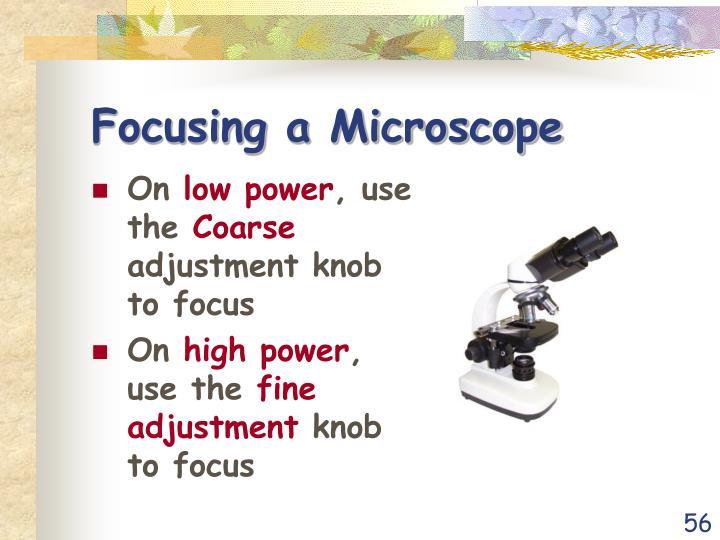 Focusing a Microscope