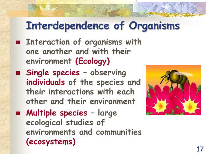 Interdependence of Organisms
