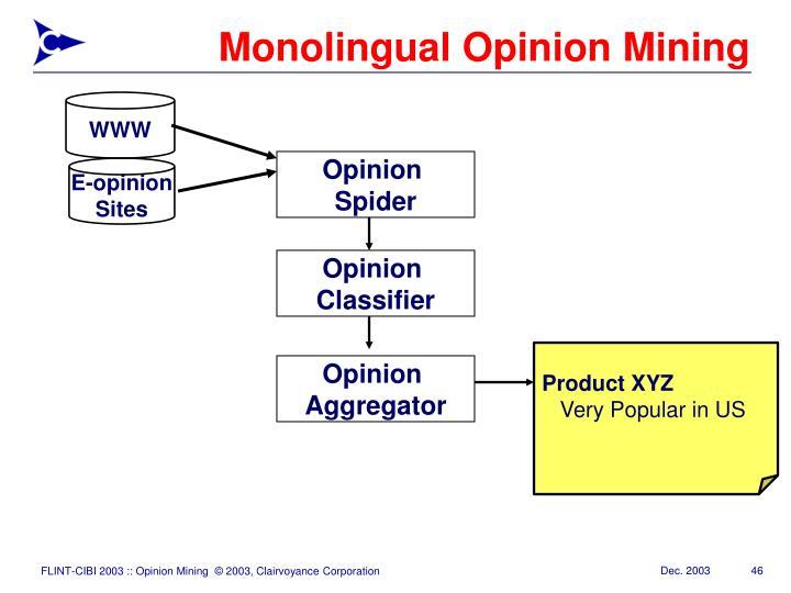 Monolingual Opinion Mining