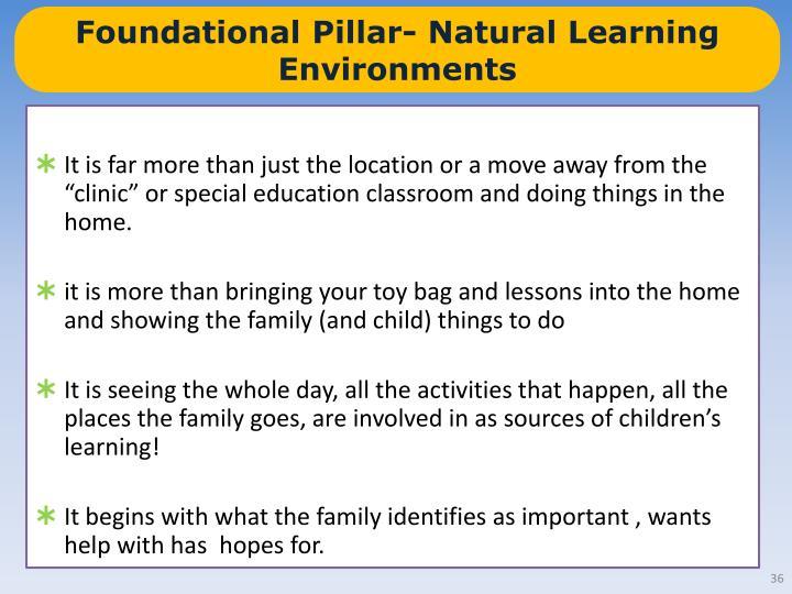 Foundational Pillar- Natural Learning Environments
