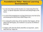 foundational pillar natural learning environments