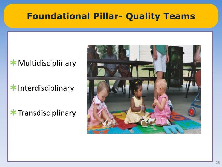 Foundational Pillar- Quality Teams