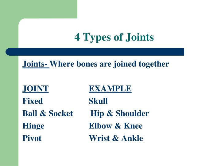4 Types of Joints