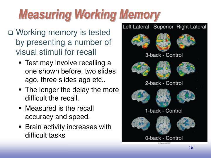 Measuring Working Memory