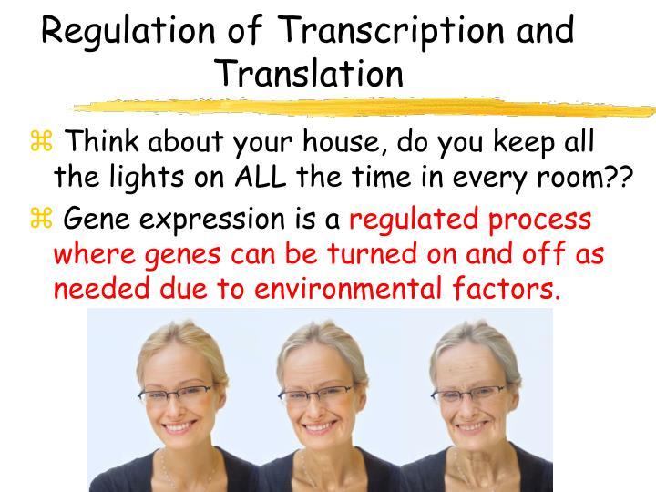 Regulation of Transcription and Translation