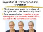 regulation of transcription and translation