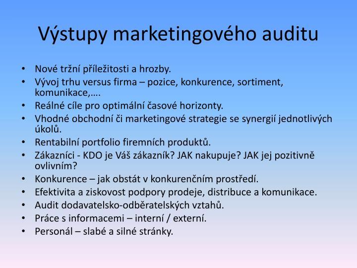 Výstupy marketingového auditu