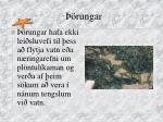 rungar1