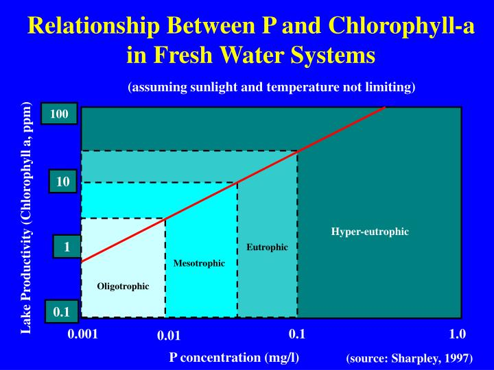 PPT - Agricultural Phosphorus and Eutrophication ...