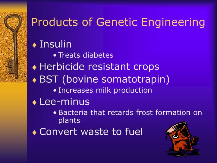 Products of Genetic Engineering