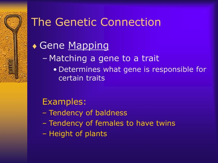 The Genetic Connection