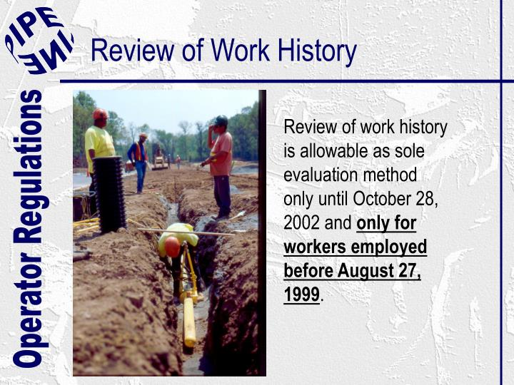 Review of Work History