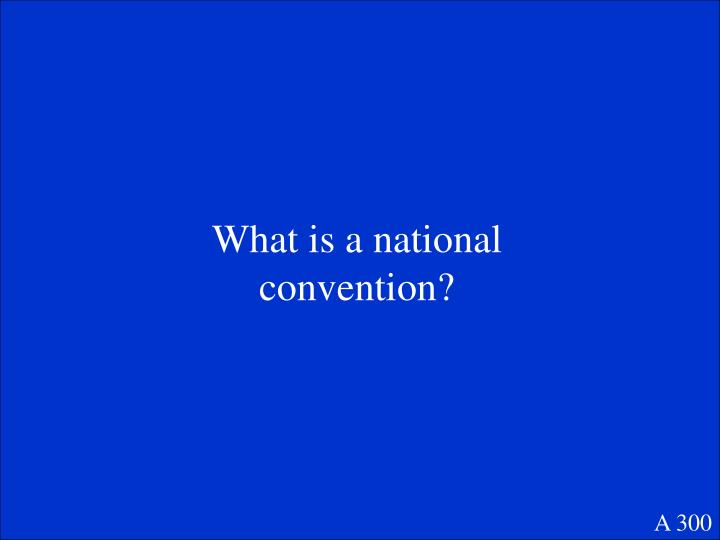 What is a national convention?