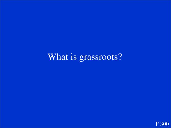 What is grassroots?