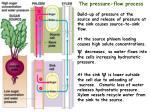 pressure flow schematic