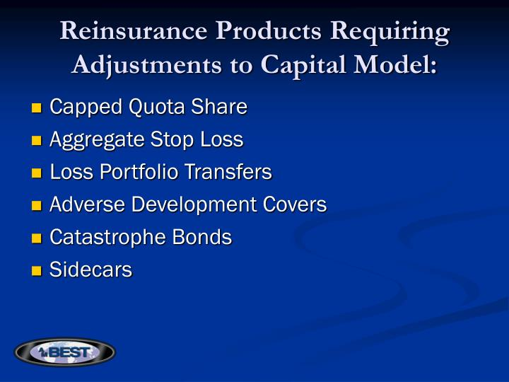 Reinsurance Products Requiring Adjustments to Capital Model: