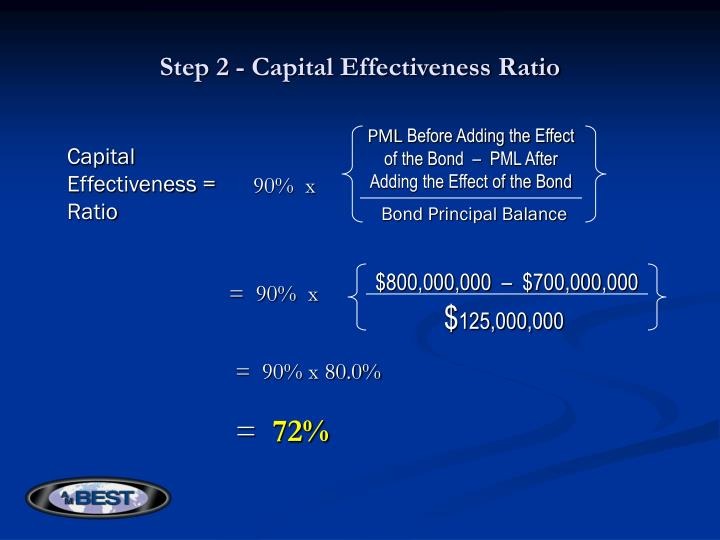 Step 2 - Capital Effectiveness Ratio