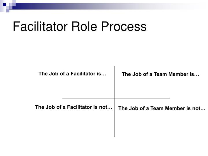 Facilitator Role Process