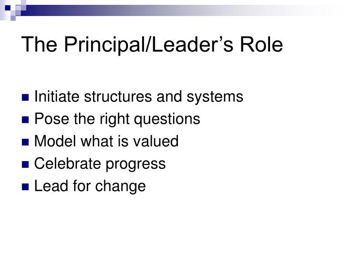 The Principal/Leader's Role