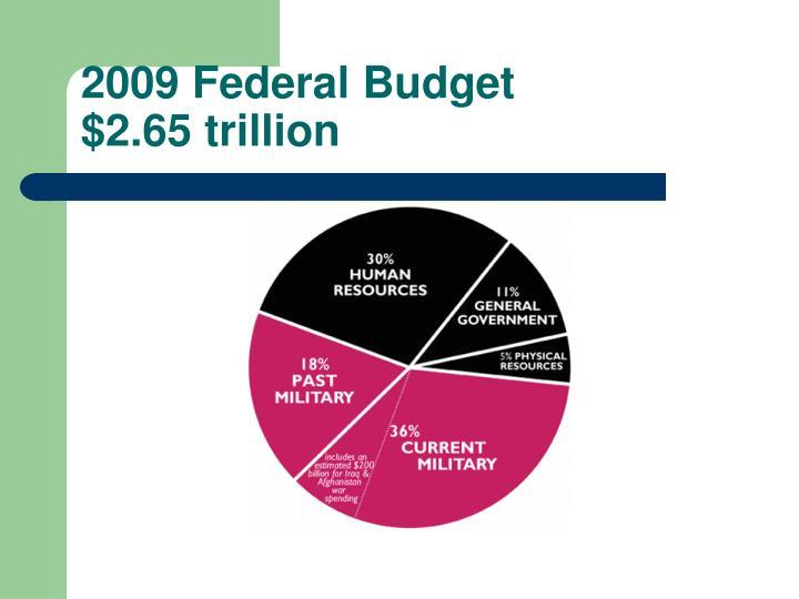 2009 Federal Budget