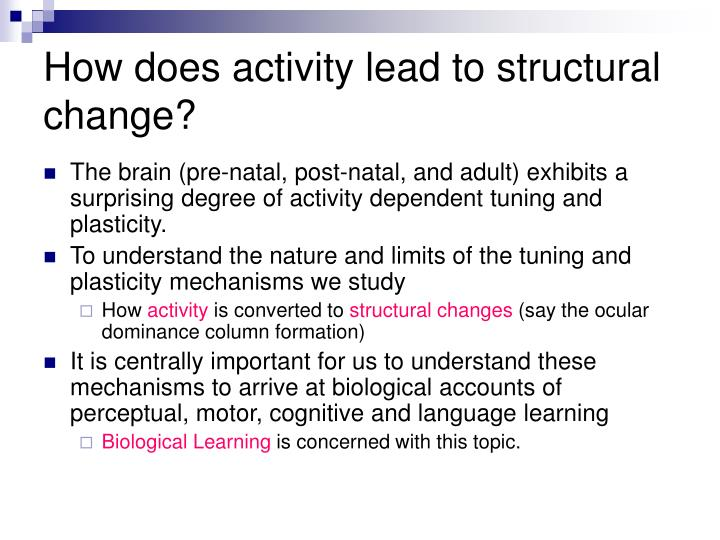 How does activity lead to structural change?
