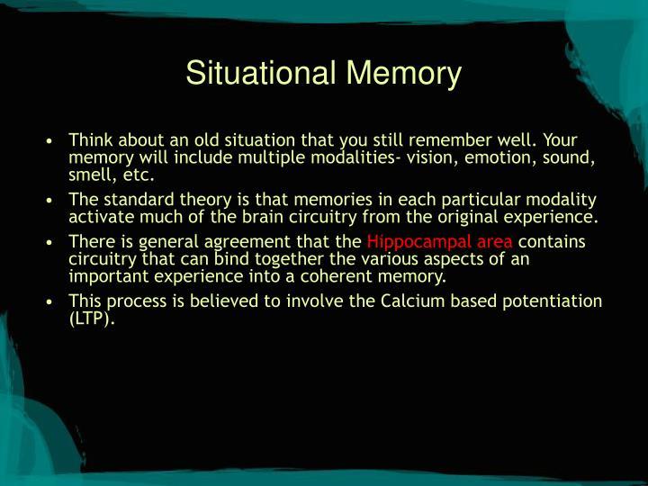 Situational Memory