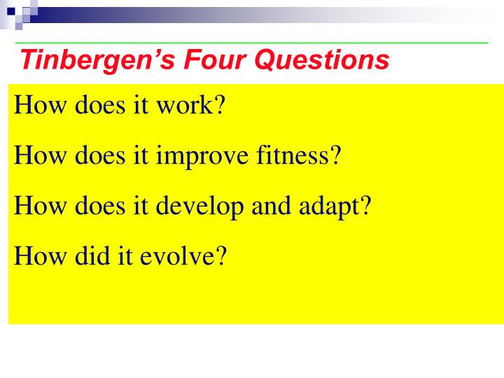 Tinbergen's Four Questions