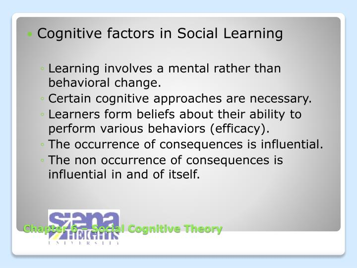 Cognitive factors in Social Learning
