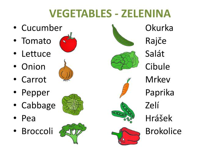 VEGETABLES - ZELENINA