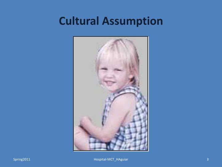 Cultural Assumption