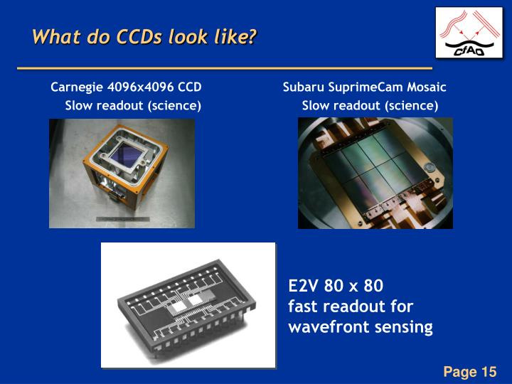 What do CCDs look like?