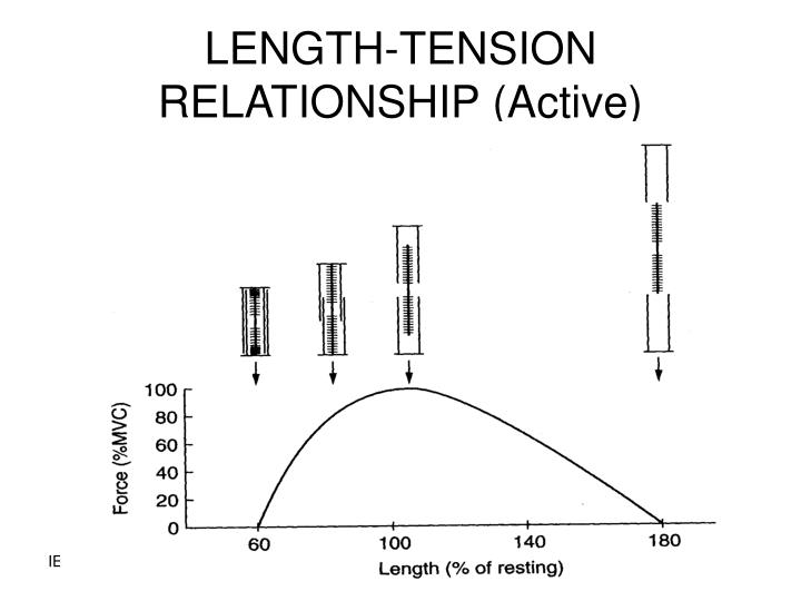 LENGTH-TENSION