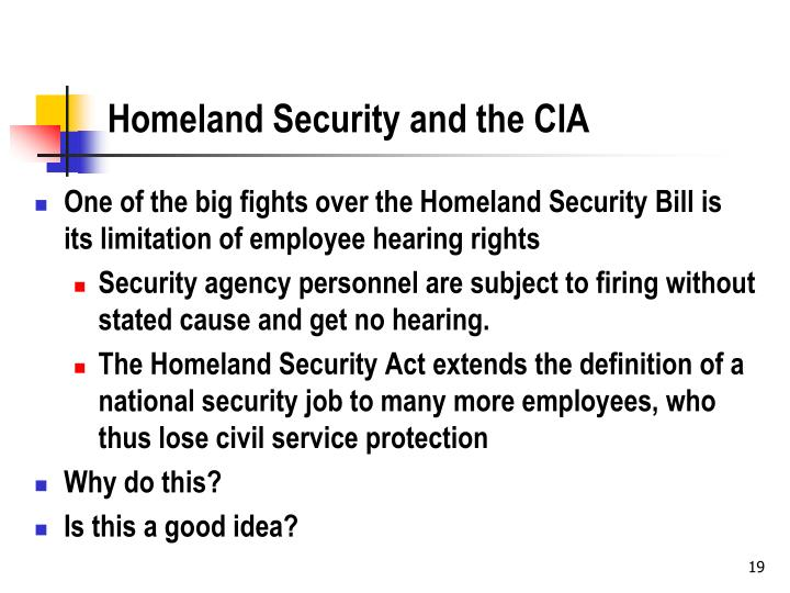 Homeland Security and the CIA