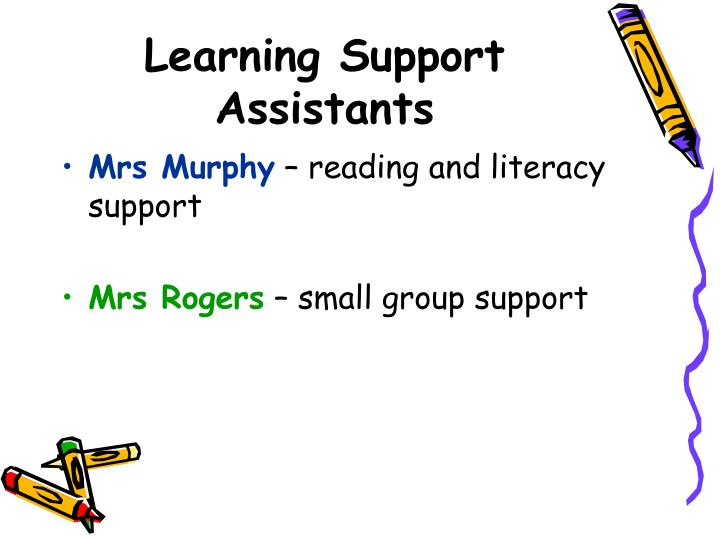 Learning Support Assistants
