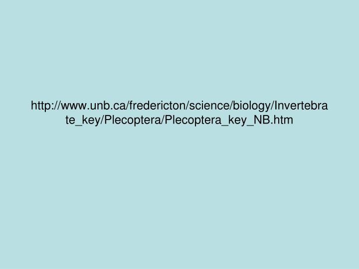 http://www.unb.ca/fredericton/science/biology/Invertebrate_key/Plecoptera/Plecoptera_key_NB.htm