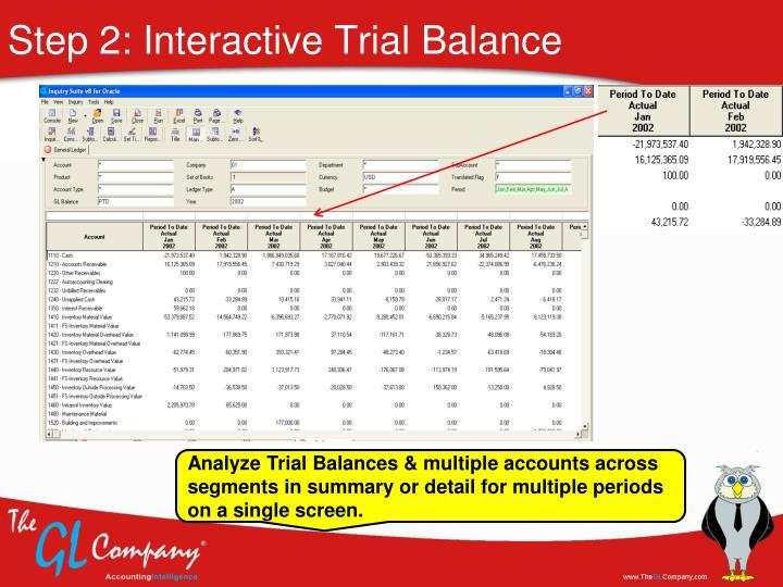Step 2: Interactive Trial Balance