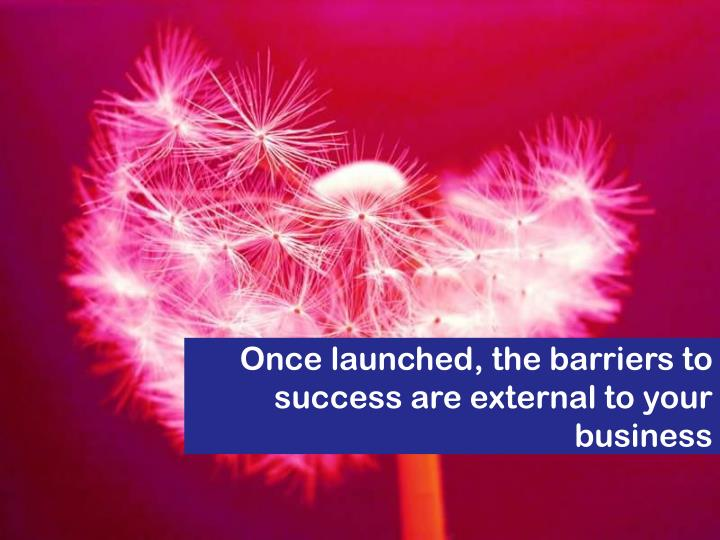 Once launched, the barriers to success are external to your business