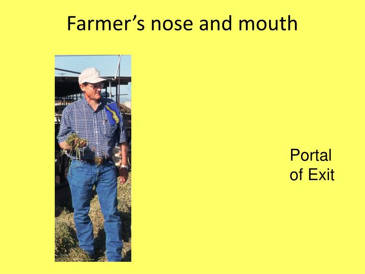 Farmer's nose and mouth