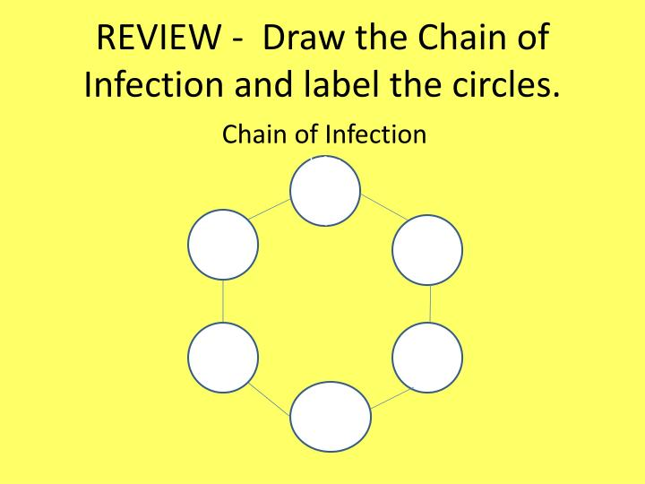REVIEW -  Draw the Chain of Infection and label the circles.