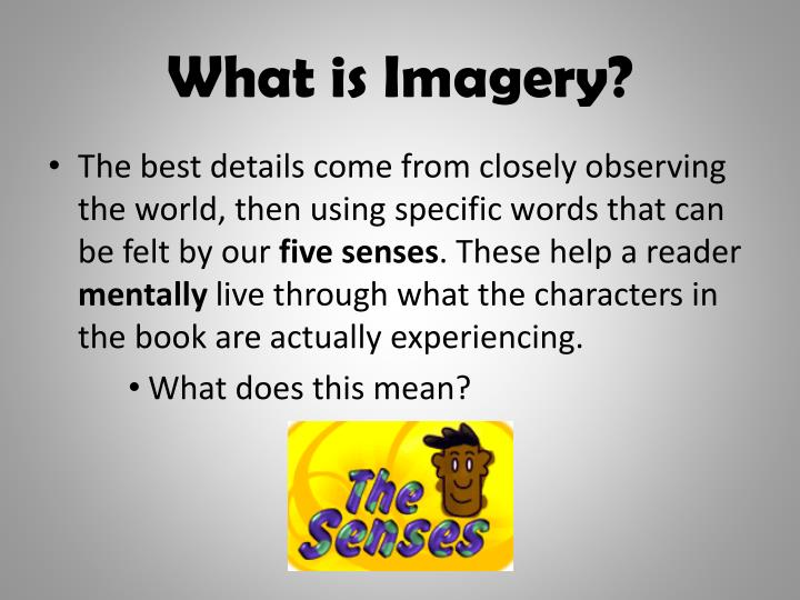 What is imagery1