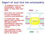 import of acyl coa into mitochondria