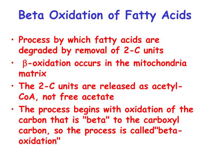 Beta Oxidation of Fatty Acids