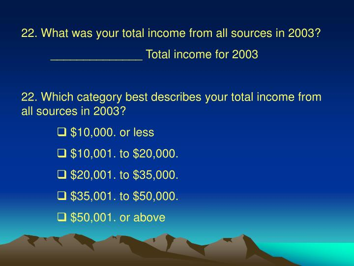22. What was your total income from all sources in 2003?