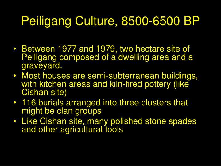Peiligang Culture, 8500-6500 BP