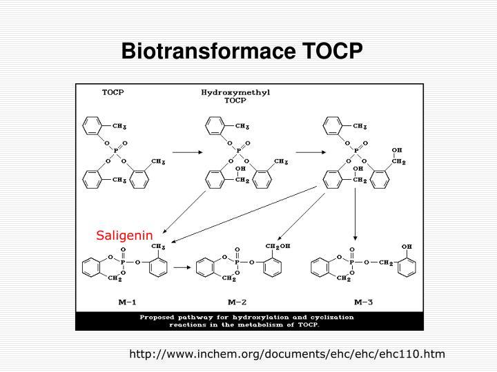 Biotransformace TOCP