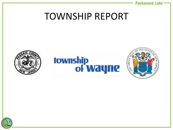 TOWNSHIP REPORT
