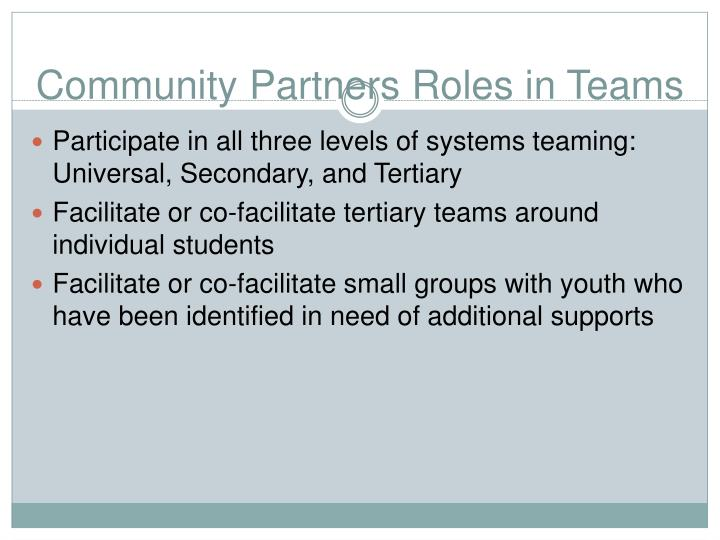 Community Partners Roles in Teams