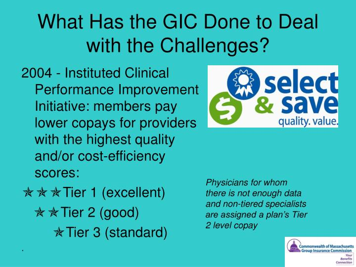 What Has the GIC Done to Deal with the Challenges?