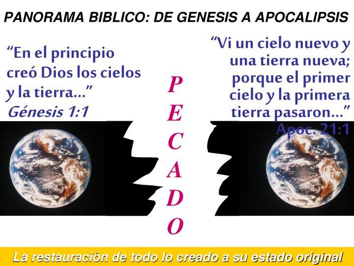 PANORAMA BIBLICO: DE GENESIS A APOCALIPSIS