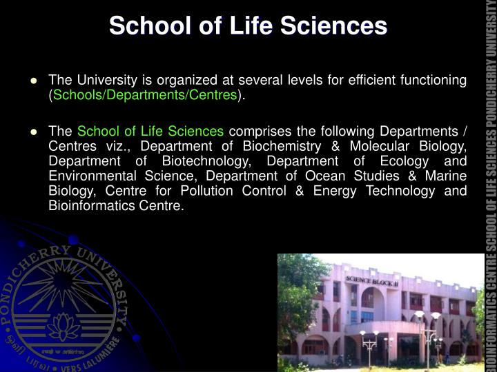 School of life sciences
